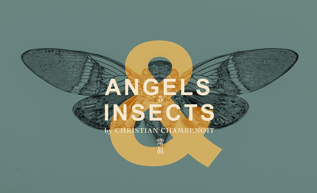 【展覽資訊|天使與昆蟲們  Angels and Insects】