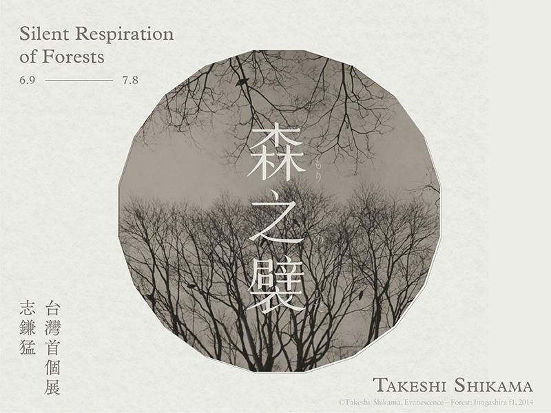 【展覽資訊|「森之襞」—志鎌猛台灣首個展 】