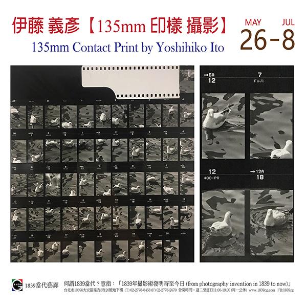 【展覽資訊|135mm 印樣攝影│伊藤義彥 】